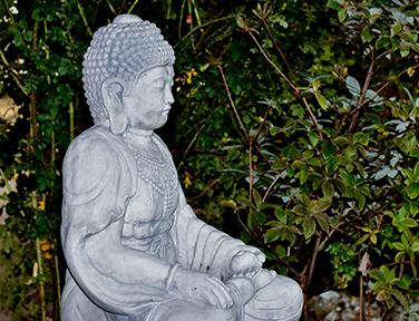 ayurveda-panchakarmakur-21-taege